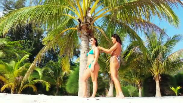 Két fiatal barátnő bikiniben áll a homokos tengerparton a pálmafa alatt és napozik. Egy lány fésülködik a barátnőjével. Gyönyörű nők pihennek trópusi üdülőhelyen