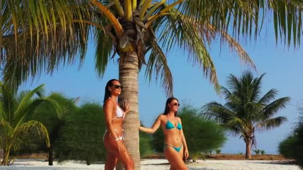 Két fiatal barátnő bikiniben áll a homokos tengerparton a pálmafa alatt és napozik. Gyönyörű nők pihennek trópusi üdülőhelyen