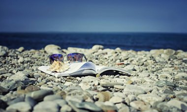 Sunglasses and seashell lie on top of the open book on beach.
