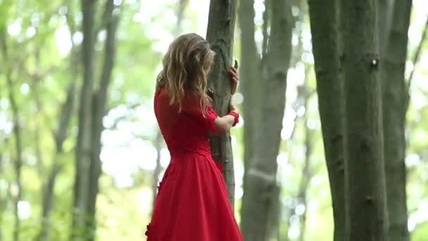 Hübsche Frau geht im Wald spazieren