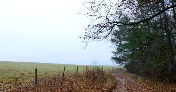 silnice v podzimní krajině