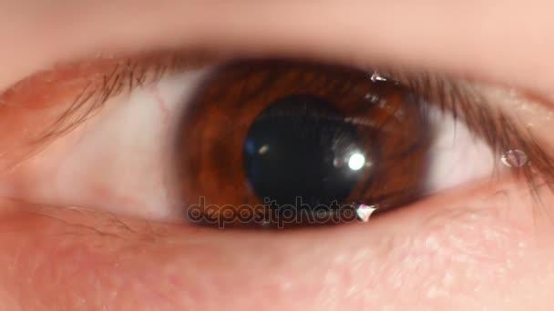 Lidské oko iris smluvní. Extrémní zblízka