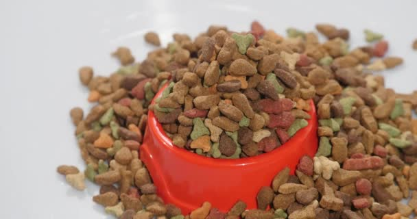 Suché krmivo pro kočky a ostatní domácí zvířata. Otáčí, studio natáčení