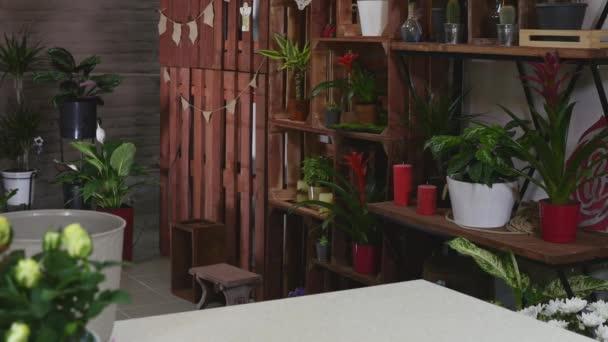 Peque as empresas elementos interiores de la tienda de for Elementos de decoracion de interiores