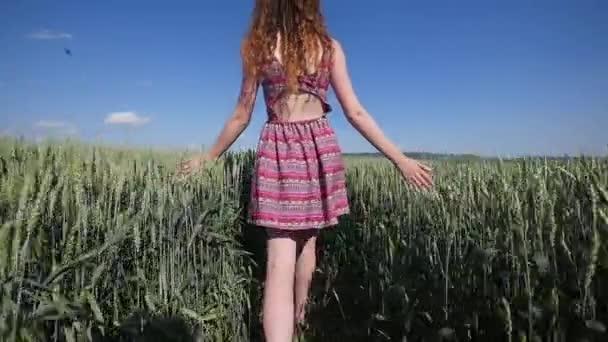 Gyaloglás mögött szépség lány búza mezőben. lassú mozgás