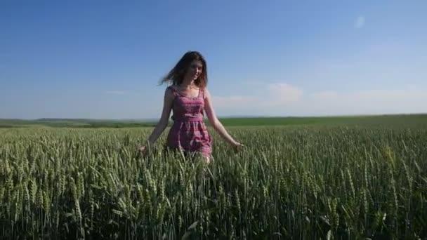 hinter der Schönheit Mädchen im Weizenfeld zu Fuß. Zeitlupe