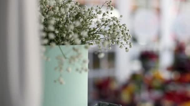 Gypsophila květiny ve váze