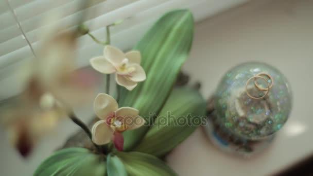 Dvě nádherné elegantní zlaté snubní prsteny svatební šperky zlaté kov pokládání poblíž nádherné nádherné čerstvé světlé žluté a růžové orchideje květy na bílém pozadí closeup vnitřní