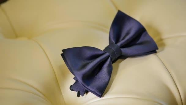 modrý motýlek na bílé pohovce