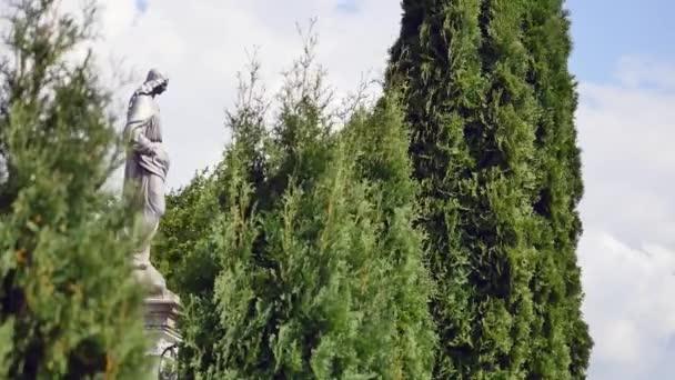 Socha na hřbitově se stromy