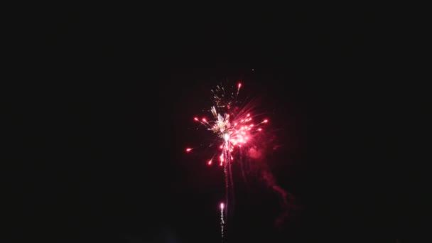 Barevný ohňostroj v noci dovolená