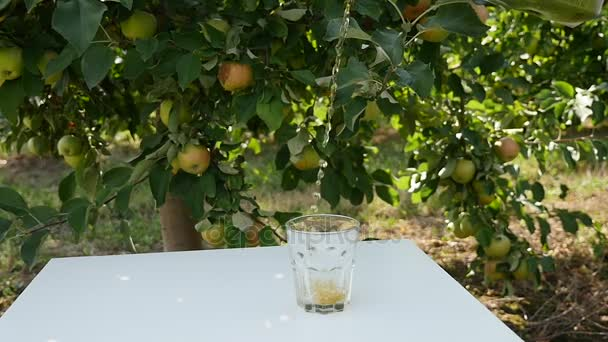 Apple juice on the background of growing apples