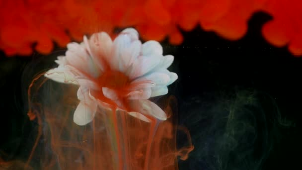 Květina s inkoustem abstraktní pozadí