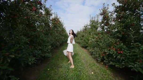 A beautiful girl goes and looks at the plantation, on a sunny day. Concept: bio products, natural products, fresh, delicious, fruits, vegetables, grow, water, plants, photosynthesis