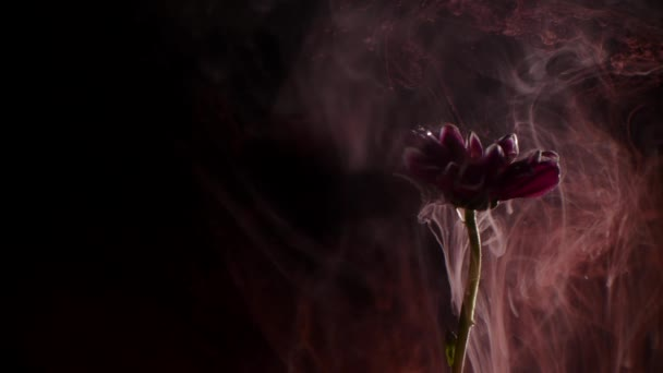 Flower with ink abstract background