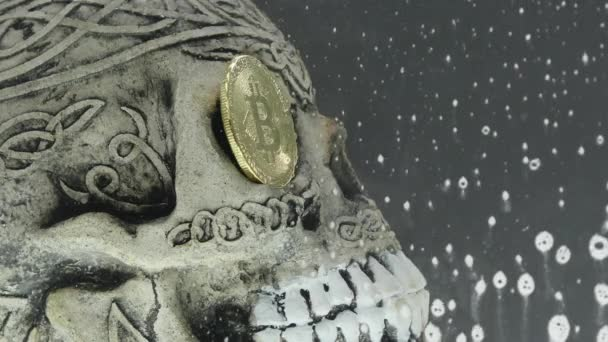 Skull in an aquarium with coin bitcoin