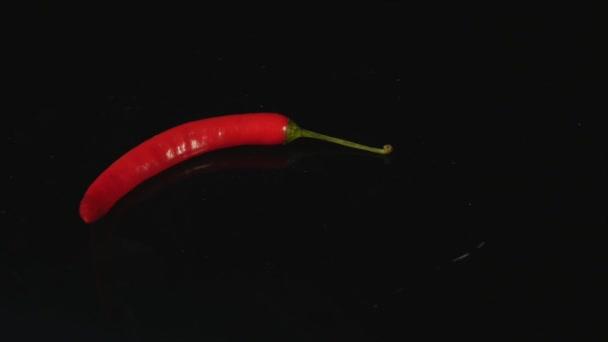 červené chili pepper izolovaných na černém pozadí