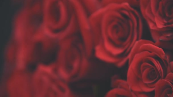Cropped video of beautiful bouquet of large red roses.