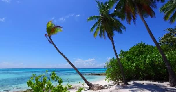 v02354 Maledivy krásné pláže pozadí bílé písečné tropický ráj ostrov s modrou oblohu moře vody oceánu 4k