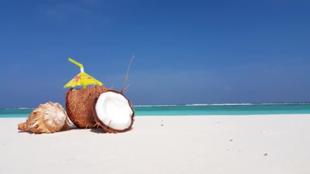 v02947 Maledivy krásné pláže pozadí bílé písečné tropický ráj ostrov s modrou oblohu moře vody oceánu 4k kokosové mušle