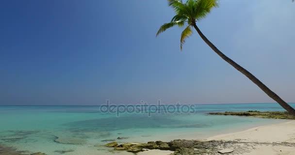 v01076 Maledivy krásné pláže pozadí bílé písečné tropický ráj ostrov s modrou oblohu moře vody oceánu 4k palmu