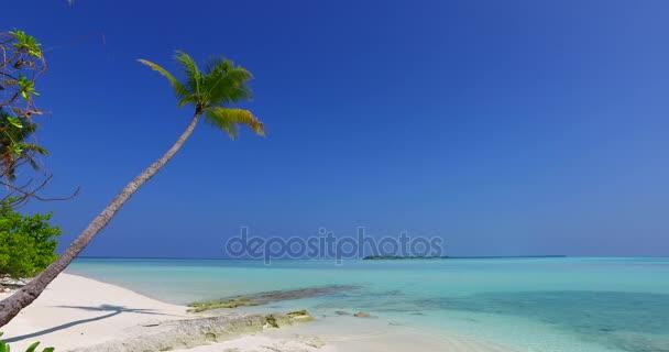v01616 Maledivy krásné pláže pozadí bílé písečné tropický ráj ostrov s modrou oblohu moře vody oceánu 4k palmy