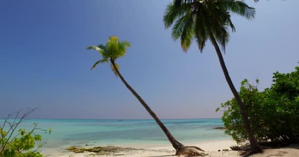 v01854 Maledivy krásné pláže pozadí bílé písečné tropický ráj ostrov s modrou oblohu moře vody oceánu 4k palmy