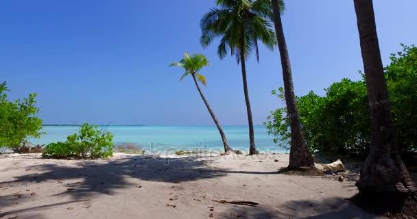v01992 Maledivy krásné pláže pozadí bílé písečné tropický ráj ostrov s modrou oblohu moře vody oceánu 4k palmy