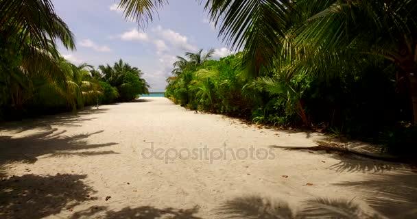 v00038 Maledivy krásné pláže pozadí bílé písečné tropický ráj ostrov s modrou oblohu moře vody oceánu 4k palmy