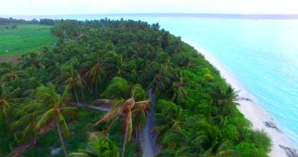 v00076 Maldives beautiful beach background white sandy tropical paradise island with blue sky sea water ocean 4k palm trees