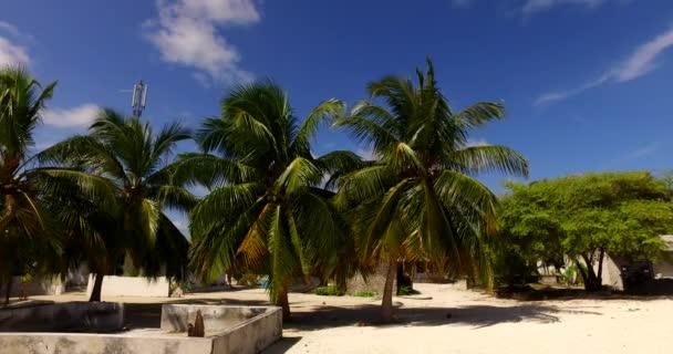 v00111 Maledivy krásné pláže pozadí bílé písečné tropický ráj ostrov s modrou oblohu moře vody oceánu 4k palmy