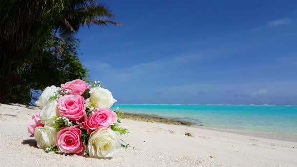 Maledivy krásné pláže pozadí bílé písečné tropický ráj ostrov s modrou oblohu moře vody oceánu 4k kytice květiny růžové