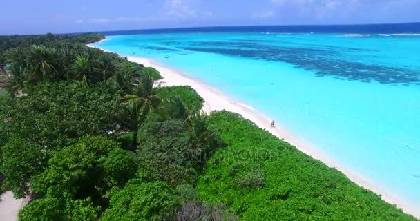v00734 Maledivy krásné pláže pozadí bílé písečné tropický ráj ostrova s modrou oblohu moře vody oceánu 4k letecké drone flying nadjezdu ptáci oko palmy