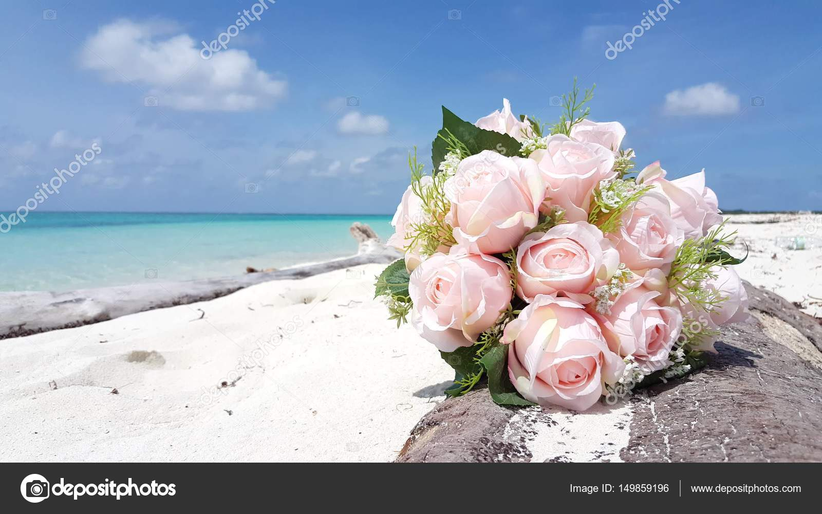 V00011 Maldive Bellissima Spiaggia Sfondo Bianco Sabbia Paradiso