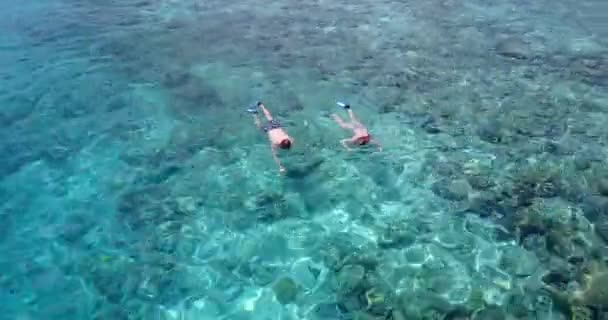 v04056 Aerial flying drone view of Maldives white sandy beach 2 people young couple man woman snorkeling swimming diving on sunny tropical paradise island with aqua blue sky sea water ocean 4k