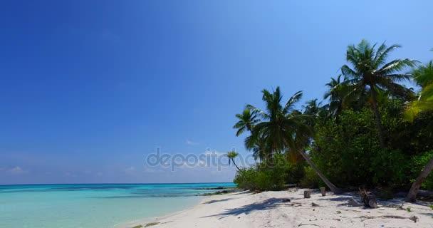v07981 Maledivy pozadí krásné bílé písčité pláže s palmami na slunečné tropické paradise island s aqua blue sky moře vody oceánu 4k
