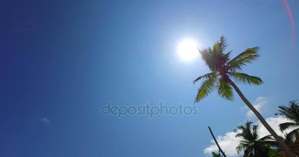v07964 Maledivy pozadí krásné bílé písčité pláže s palmami na slunečné tropické paradise island s aqua blue sky moře vody oceánu 4k