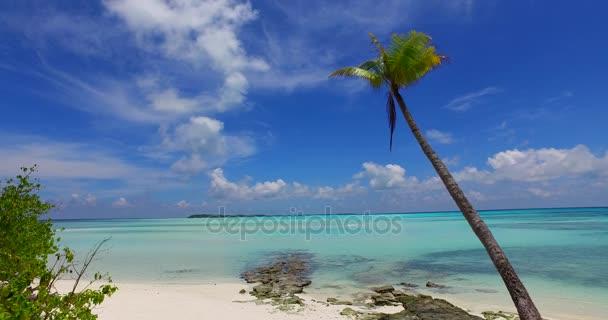 v07953 Maledivy pozadí krásné bílé písčité pláže s palmami na slunečné tropické paradise island s aqua blue sky moře vody oceánu 4k
