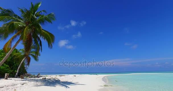 v07989 Maledivy pozadí krásné bílé písčité pláže s palmami na slunečné tropické paradise island s aqua blue sky moře vody oceánu 4k