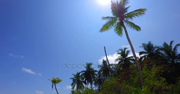 v07983 Maledivy pozadí krásné bílé písčité pláže s palmami na slunečné tropické paradise island s aqua blue sky moře vody oceánu 4k