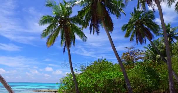 v07966 Maledivy pozadí krásné bílé písčité pláže s palmami na slunečné tropické paradise island s aqua blue sky moře vody oceánu 4k