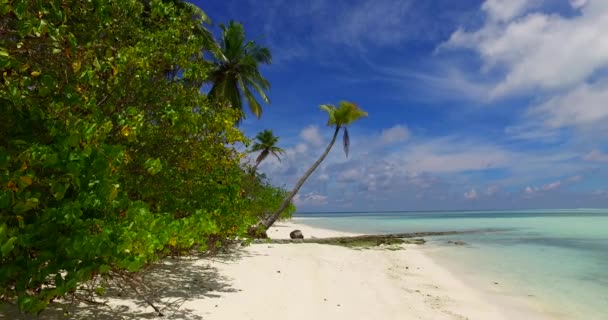 v07951 Maldives beautiful white sandy beach background with palm trees on sunny tropical paradise island with aqua blue sky sea water ocean 4k