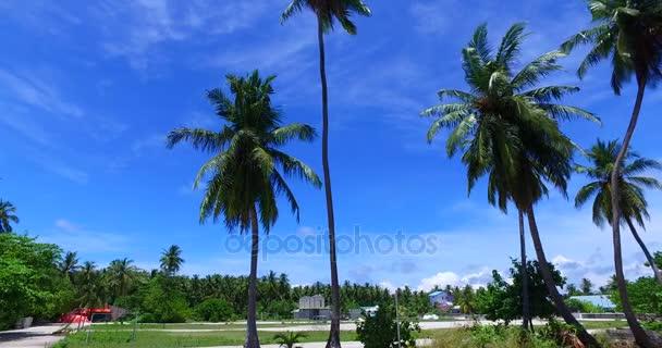 v07968 Maledivy pozadí krásné bílé písčité pláže s palmami na slunečné tropické paradise island s aqua blue sky moře vody oceánu 4k