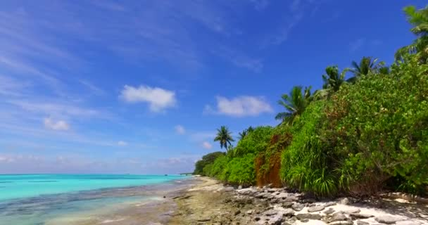 v07969 Maledivy pozadí krásné bílé písčité pláže s palmami na slunečné tropické paradise island s aqua blue sky moře vody oceánu 4k