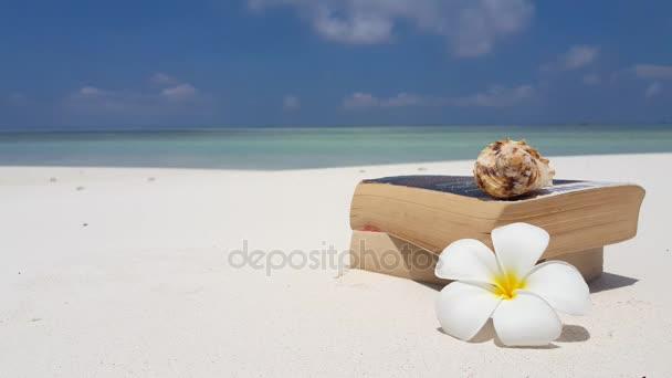 v07564 Maledivy bílá písečná pláž čtení knih na slunečné tropické paradise island s aqua blue sky moře vody oceánu 4k