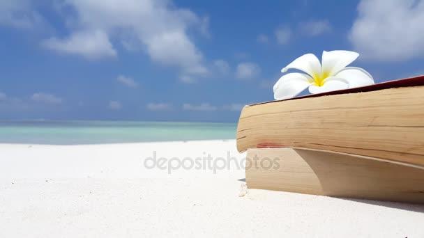 v07596 Maledivy bílá písečná pláž čtení knih na slunečné tropické paradise island s aqua blue sky moře vody oceánu 4k