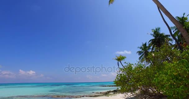 v07988 Maledivy pozadí krásné bílé písčité pláže s palmami na slunečné tropické paradise island s aqua blue sky moře vody oceánu 4k