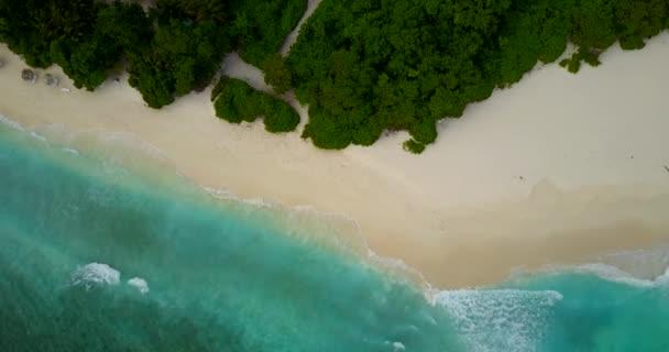 v14626 Maldive spiaggia di sabbia bianca tropicale con occhio di uccelli di volo aereo drone Mostra con acqua di mare blu aqua e cielo pieno di sole