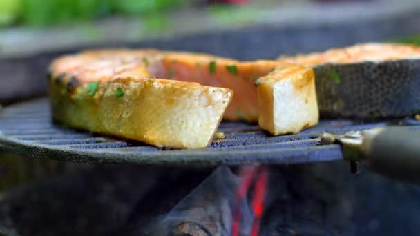 Lachs mit frischen Gewürzen grillen