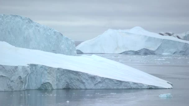 glaciers are moving on the arctic ocean at Ilulissat, Greenland Stok Video